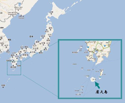 屋久島の画像 p1_20